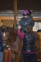 Click to view album: Girl Scouts Come To Firelight Arabians
