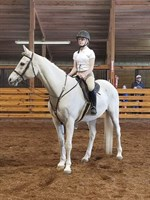 Click to view album: 2018 BAHA Spring Blast Horse Show Weekend Pictures
